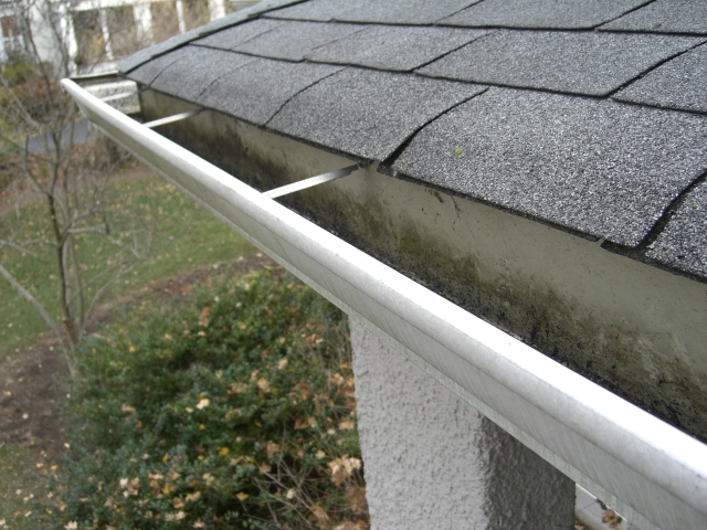 How Our Expert Gutter Cleaning Company Makes Your Seamless Gutters Shine